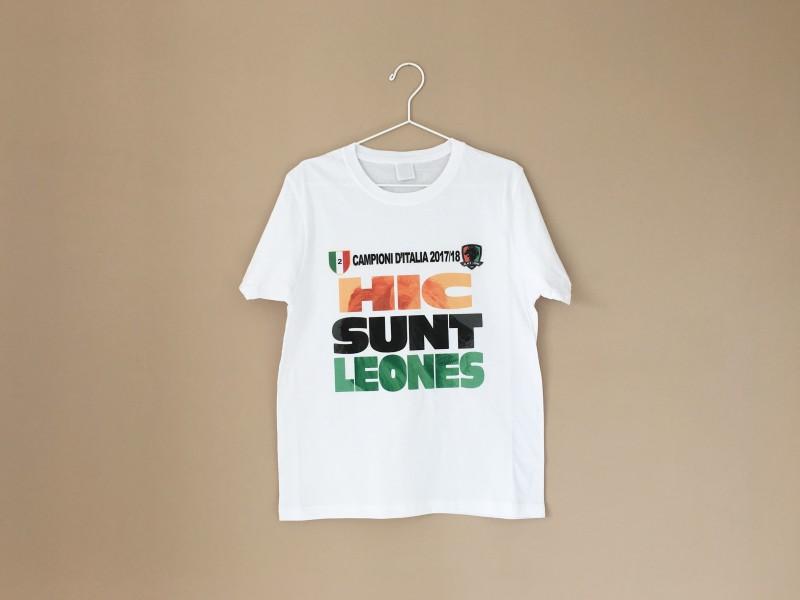 Stampa T-Shirt personalizzate sportive, serigrafia Venezia