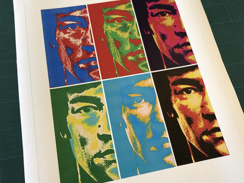 Stampa foto su tela canvas arti marziali