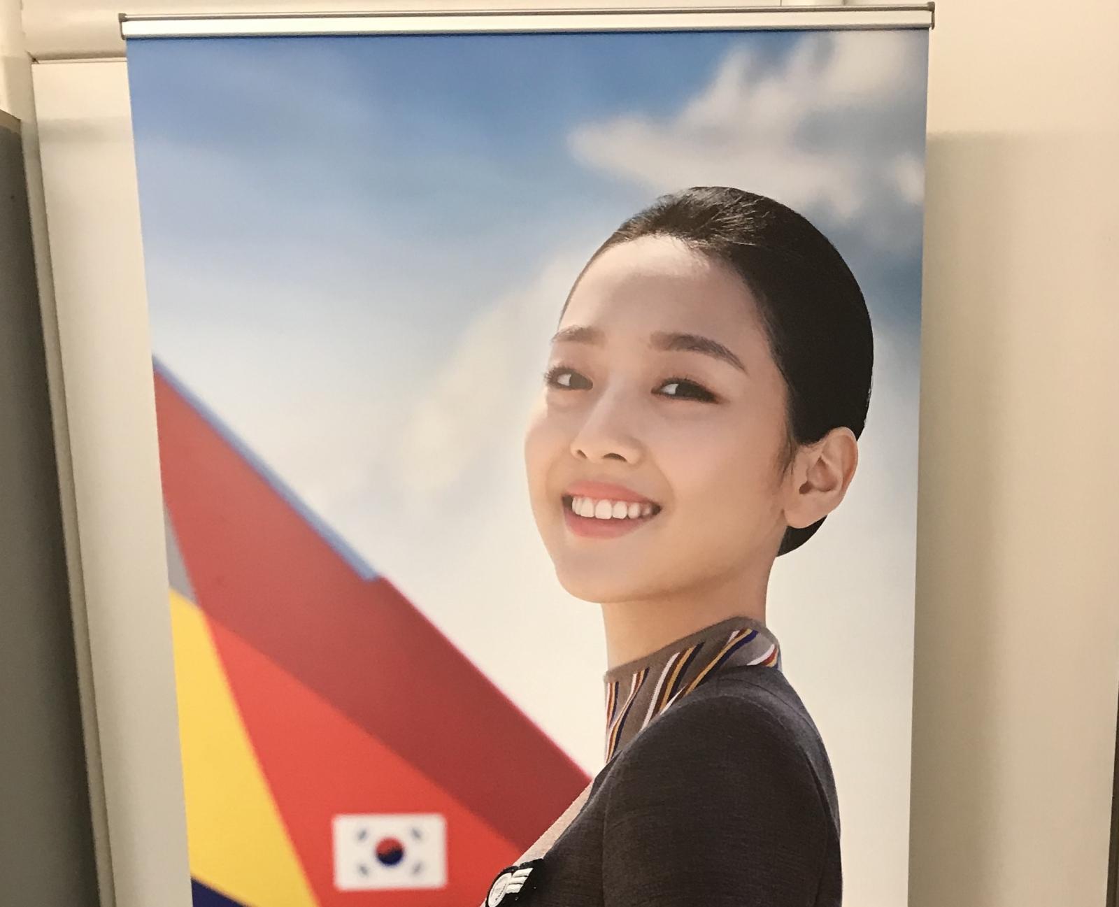 Roll-Up Personalizzato per compagnie aeree, stampa su supporto PVC riavvolgibile